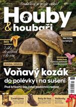 Houby a houbaři 10/2017